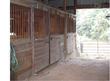 This Is A Picture Of The Outside Goat Stalls We Converted Neighbors Old Horse Barn Into Our New These Allow Us To House Many Goats